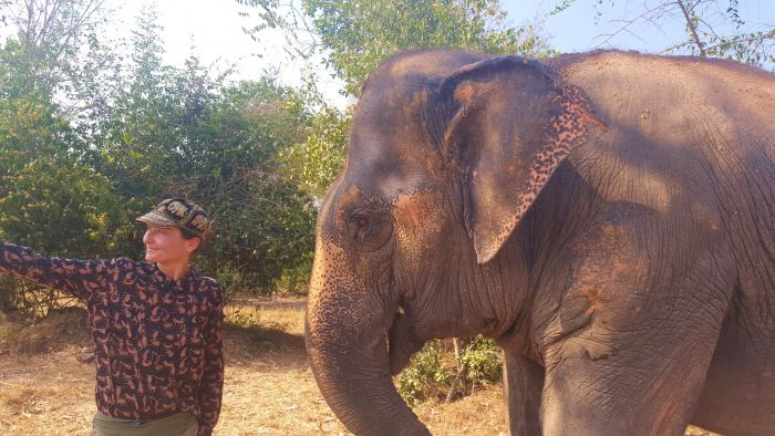 séjour écovolontariat éléphants Thaïlande