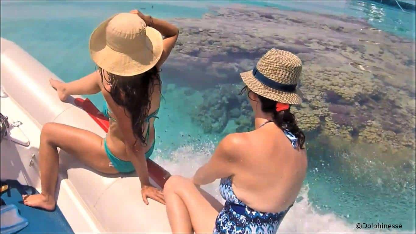 nager avec les dauphins en Mer Rouge 8