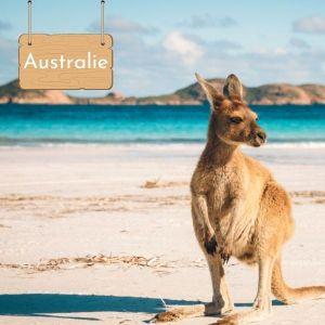 Nager avec les baleines et les dauphins en Australie