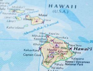 Nager avec les dauphins à Hawaii