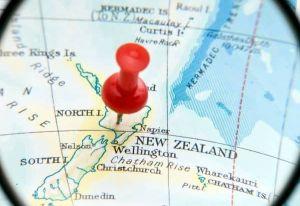 Nager avec les dauphins en Nouvelle Zélande