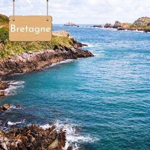 Nager avec les dauphins en Bretagne