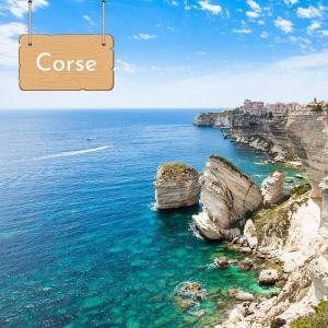 Nager avec les dauphins en Corse