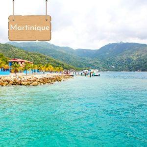 Nager avec les dauphins en Martinique