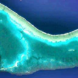 Préservation dauphins Sataya Reef