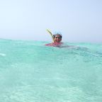 voyage nager dauphins voyage Bahamas